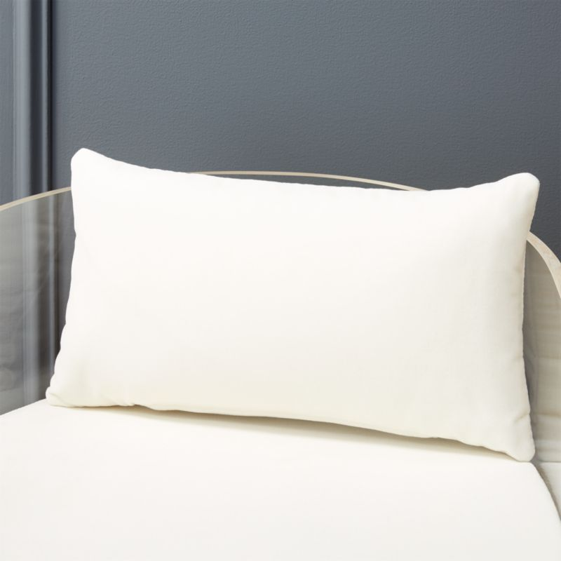 Exceptionnel Antonio Acrylic Chair Pillow + Reviews | CB2