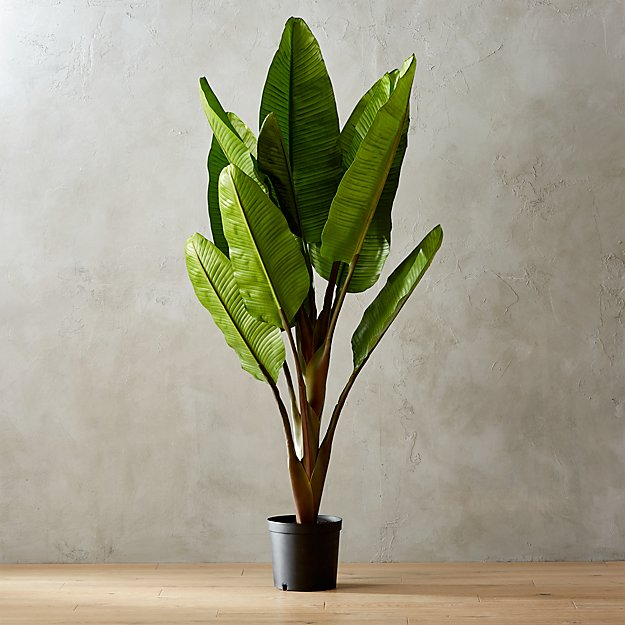 72 Quot Faux Banana Tree Reviews Cb2