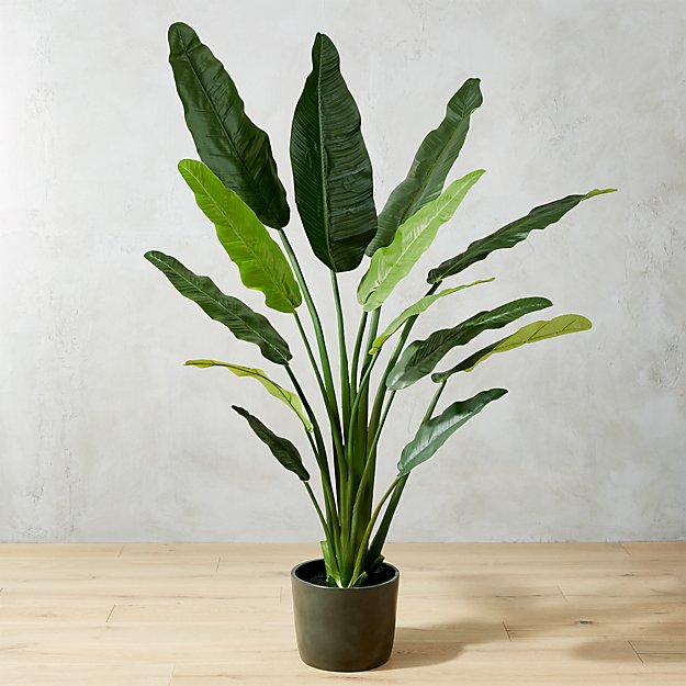 Faux 70 Potted Bird Of Paradise Reviews Cb2