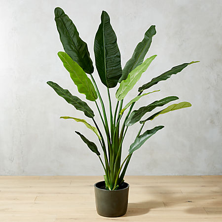 Potted Faux Bird Of Paradise 6