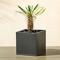 Outdoor planters cb2 blox small square galvanized charcoal planter workwithnaturefo