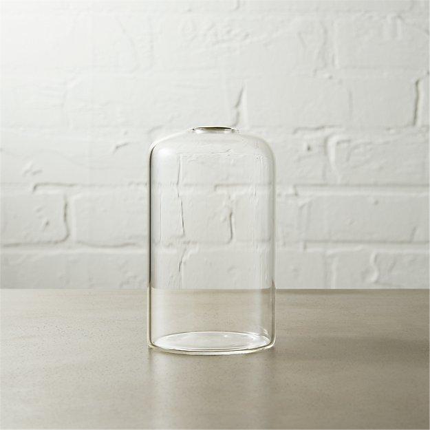 Cloche Bud Vase Reviews Cb2