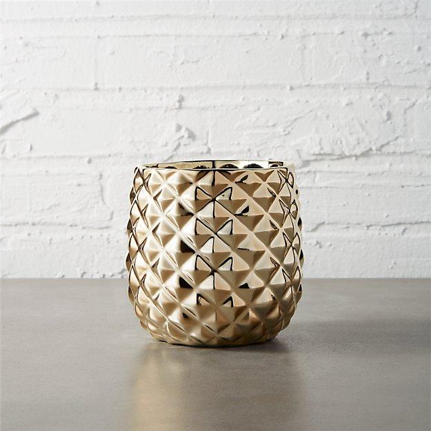 colada pineapple vase-planter + Reviews | CB2 on