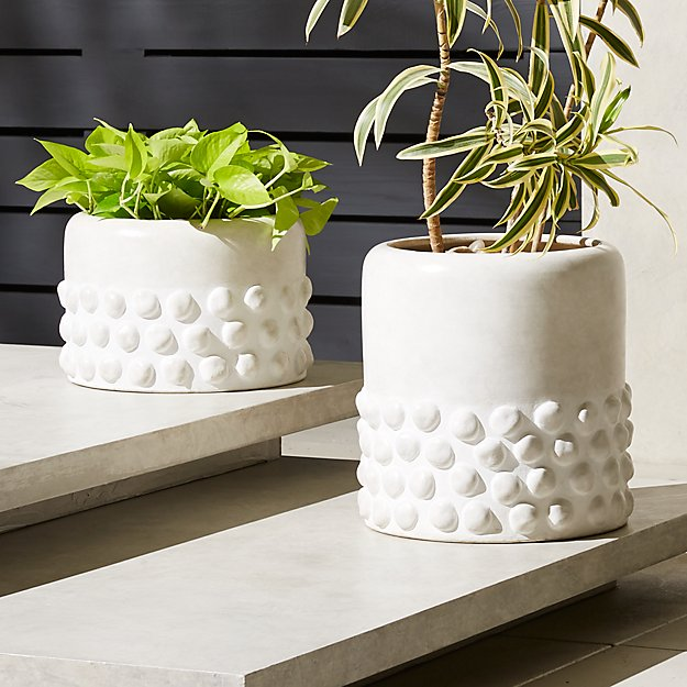 Lupa Planters - Image 1 of 11