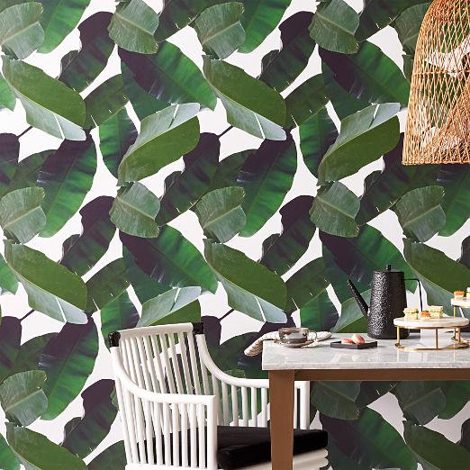 Palm Wallpaper