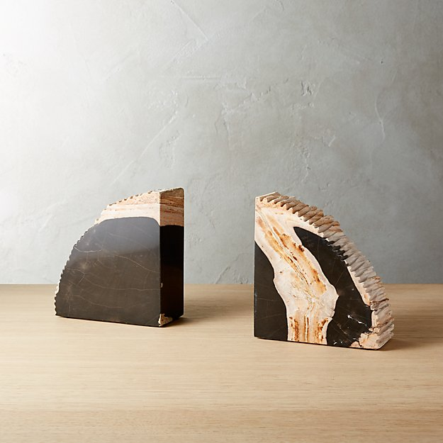 Fresh Petrified Wood Bookends Set of 2 + Reviews | CB2 PO74