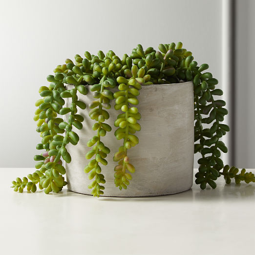 Faux Potted Burro's Tail