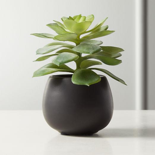 Faux Potted Echeveria Succulent