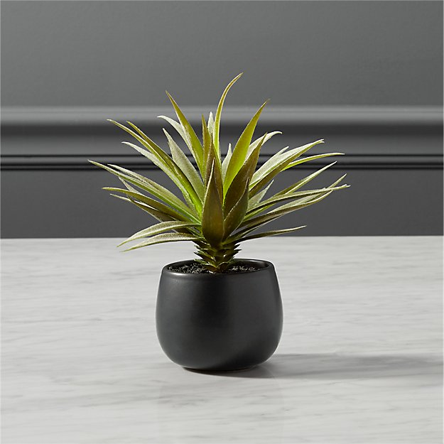 Faux Potted Succulent Reviews Cb2