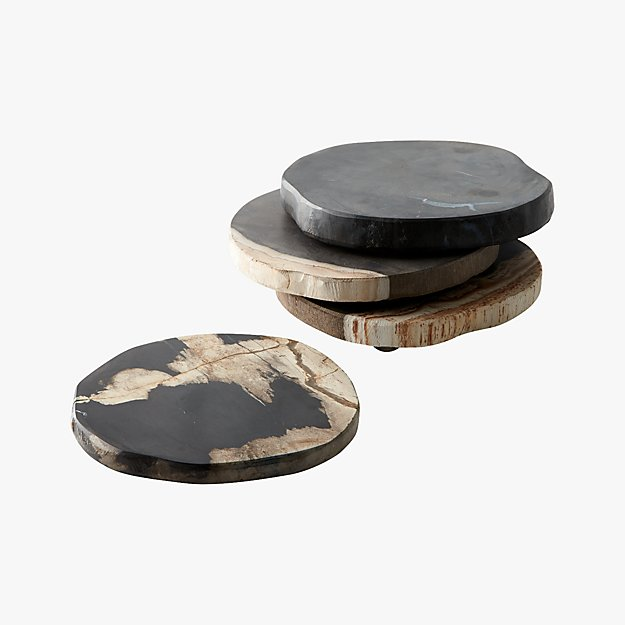 CB2 Petrified Wood Coasters