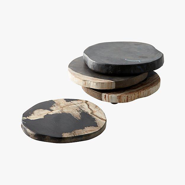 CB2 Petrified Wood Coasters
