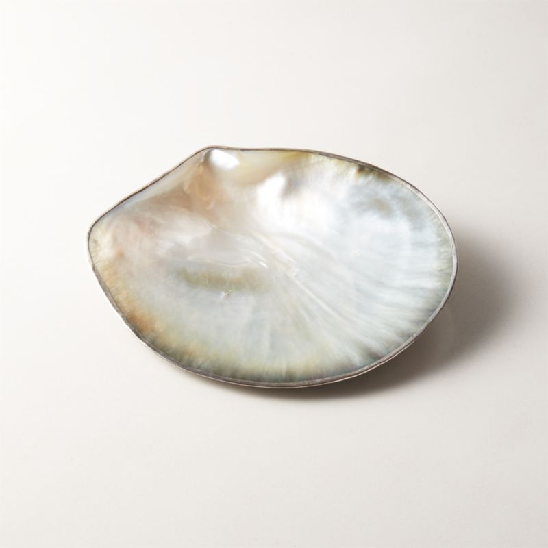 Shell Soap Dish by Crate&Barrel